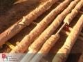 ensayos-de-traccion-de-barras-de-anclajes-mendoza-14